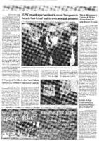Fitxer PDF de 969913 bytes - L'Actualitat del Baix Montseny, 21-04-11, pàgina 4